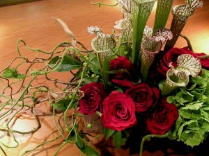 cobra lilies and red roses (2)